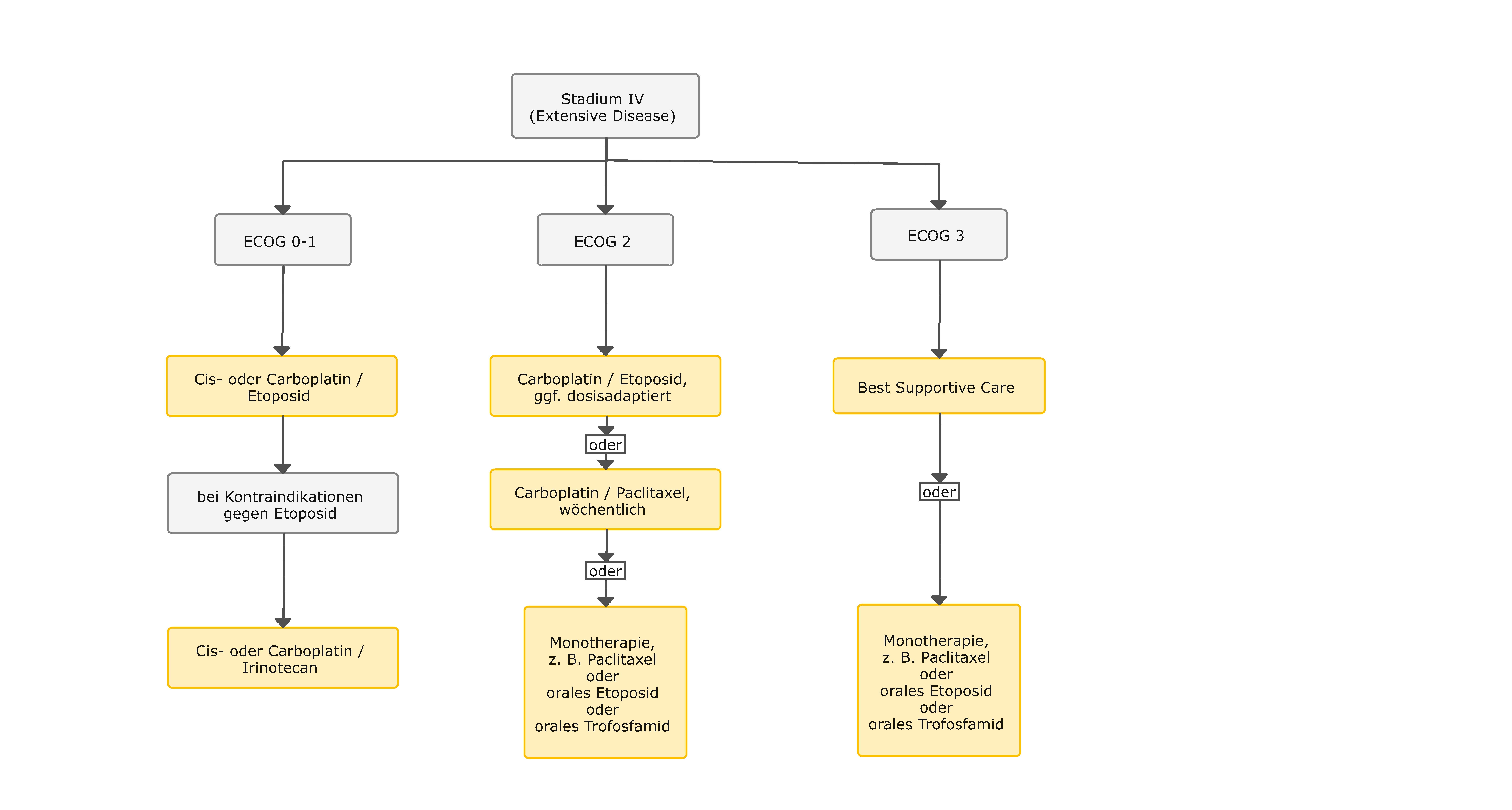 Algorithmus für die palliative, medikamentöse Erstlinientherapie beim SCLC
