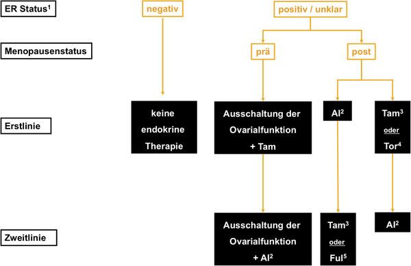 Algorithmus für die palliative endokrine Therapie