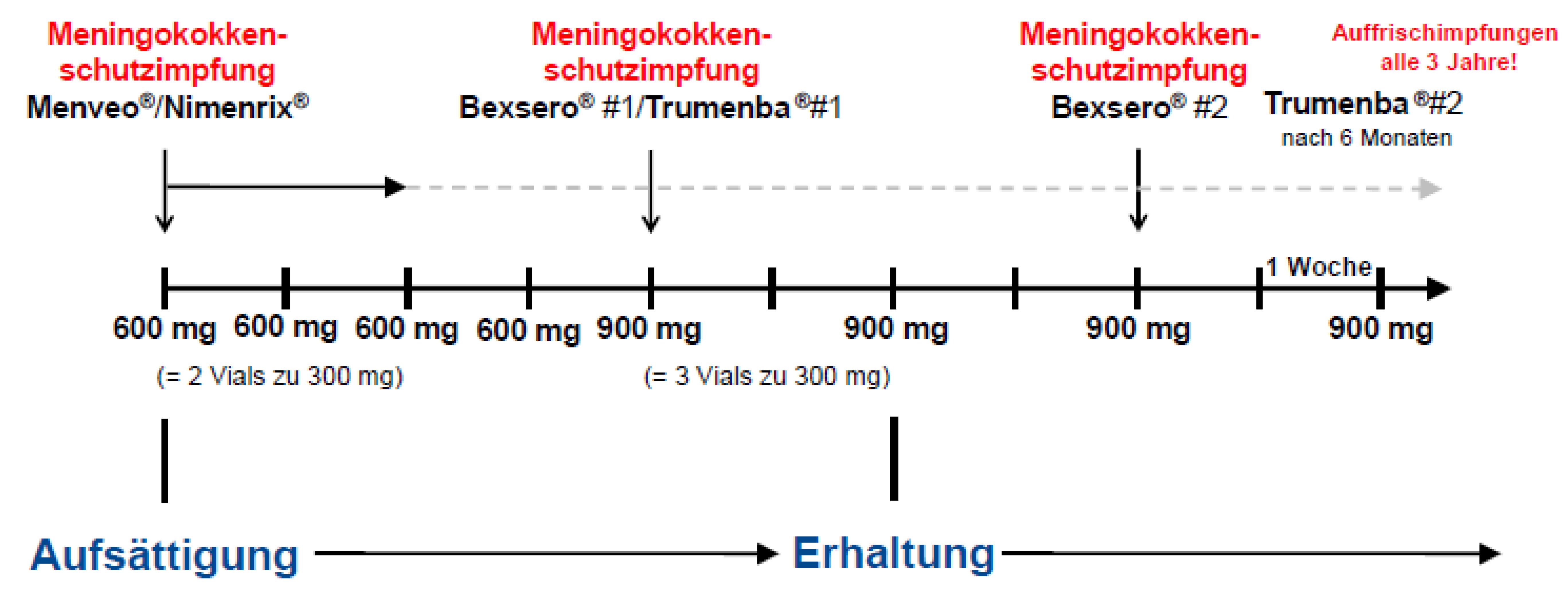 Meningokokkenschutzimpfung vor und unter Therapie mit Eculizumab (Soliris®)