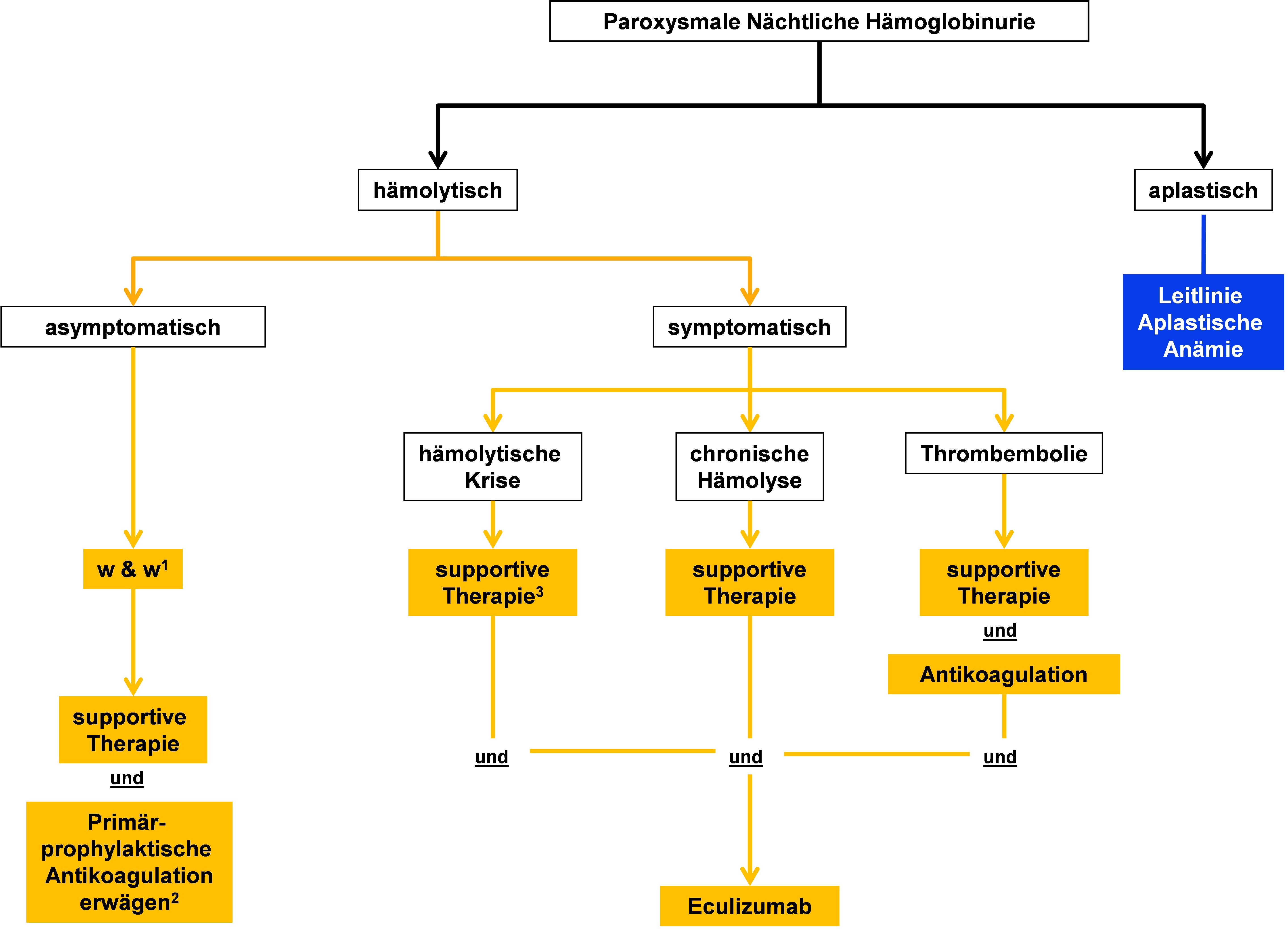 Algorithmus für die Therapie von Patienten mit Paroxysmaler Nächtlicher Hämoglobinurie