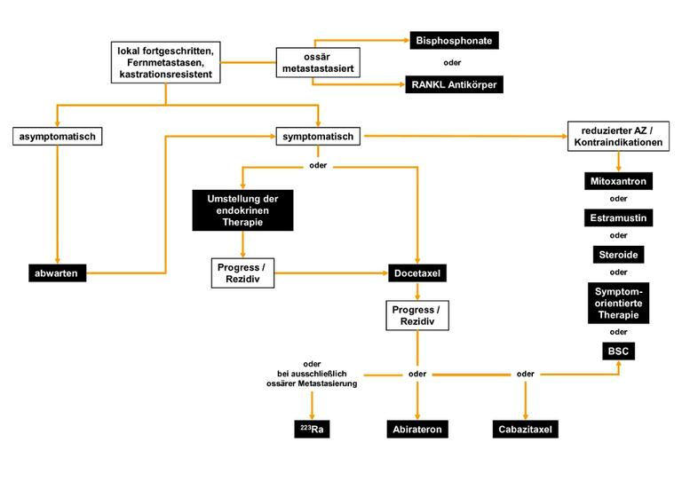 Algorithmus für die Therapie des kastrationsresistenten Prostatakarzinoms