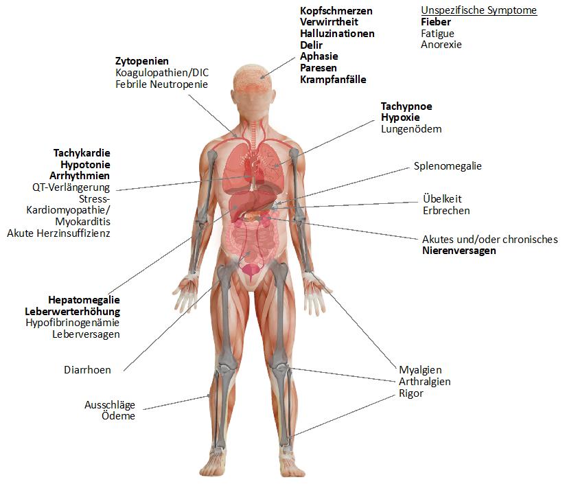 Symptome des CRS.