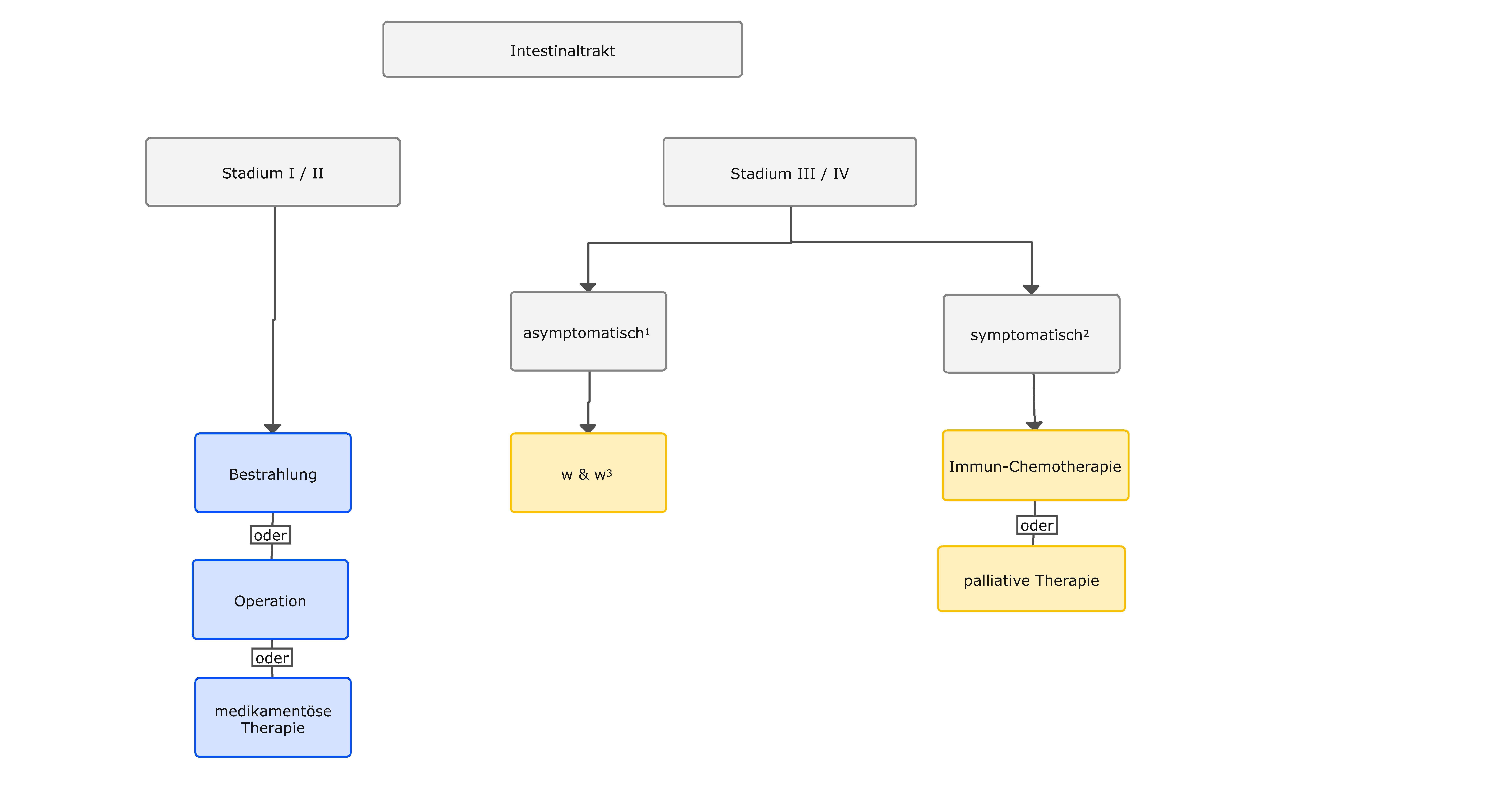 Therapiealgorithmus beim MALT-Lymphom des Intestinaltraktes