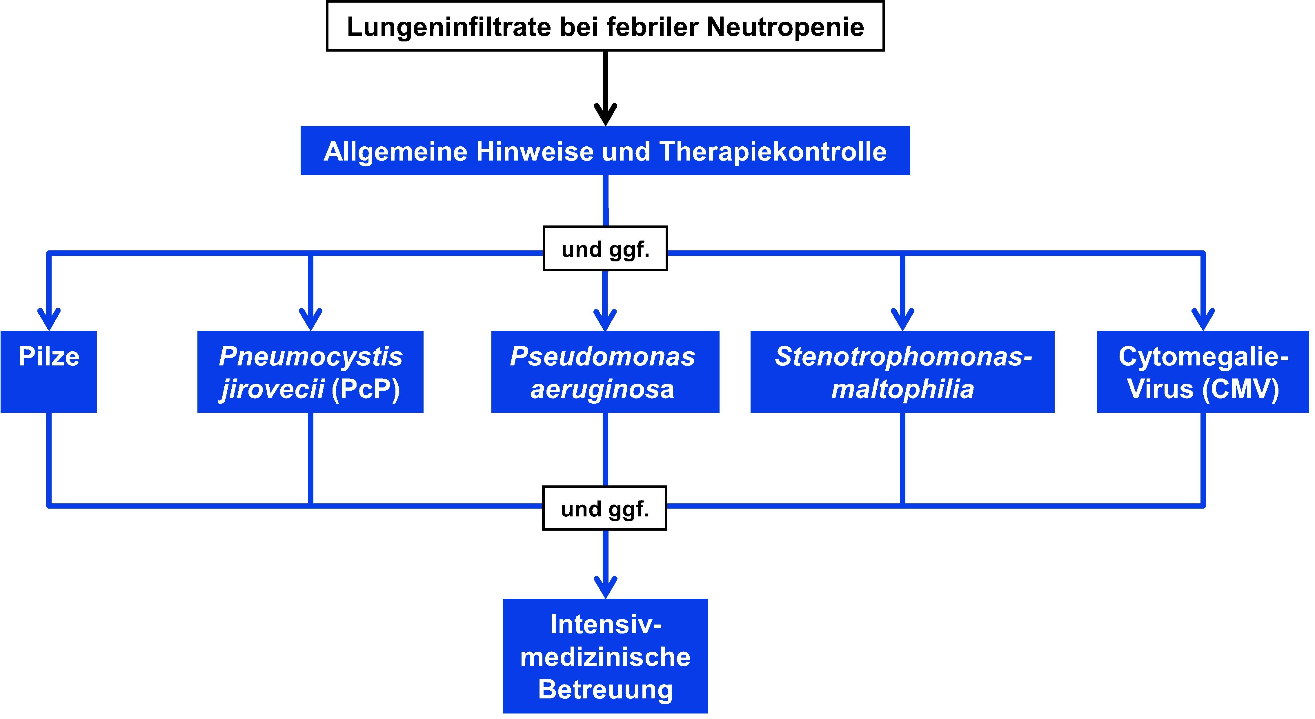 Therapie bei Patienten mit febriler Neutropenie und Lungeninfiltraten