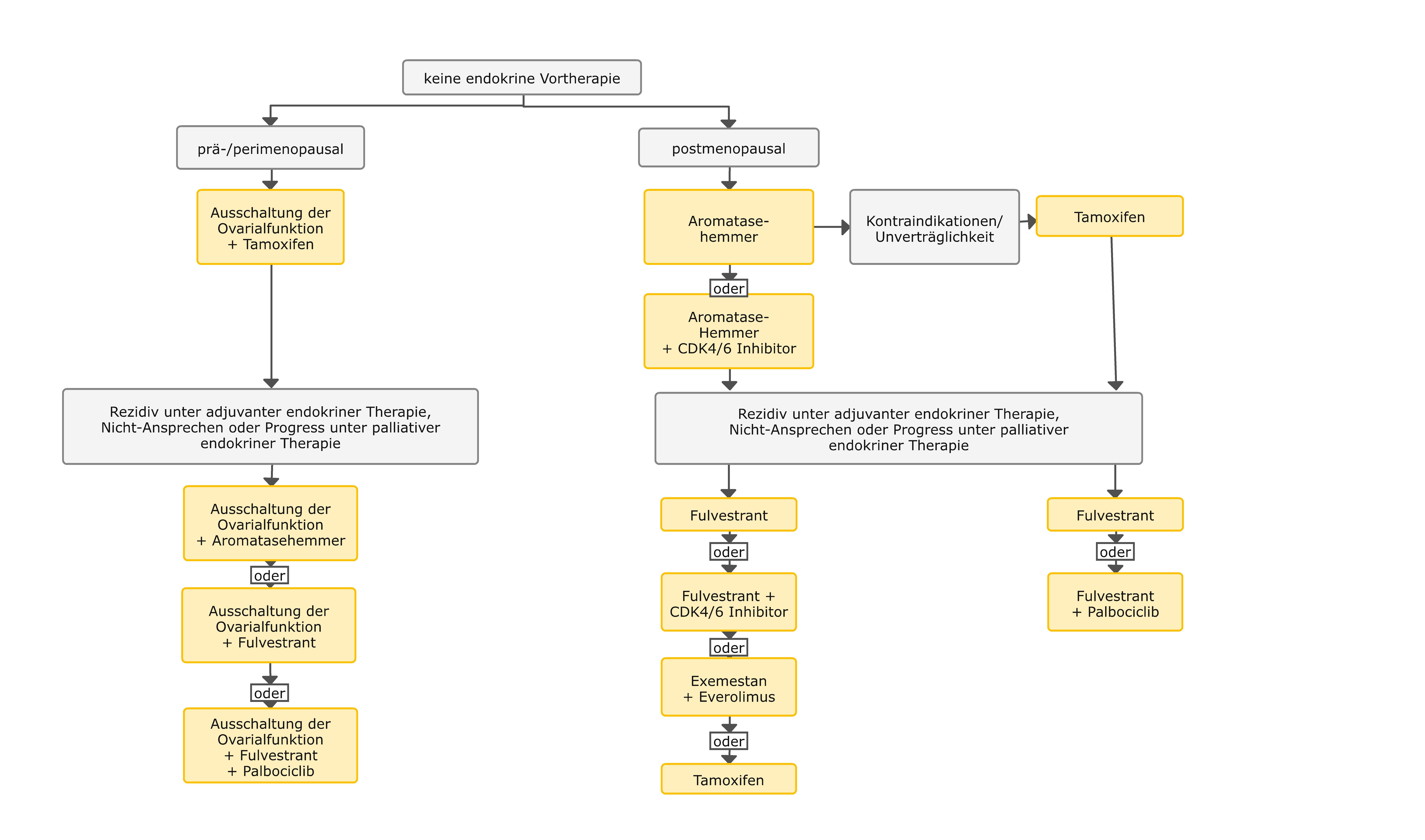 Algorithmus für die endokrine Therapie bei HR positivem, fortgeschrittenem oder metastasiertem Mammakarzinom